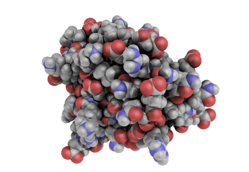 1BTA with ambient occlusion in PyMOL